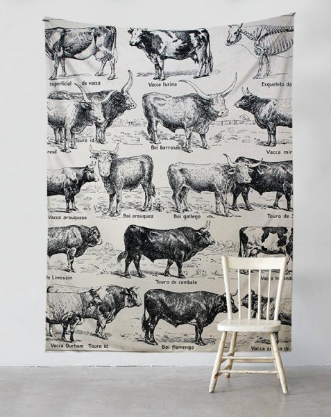 cows-ilustration